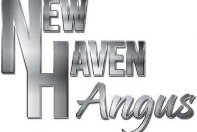 header-logo-2 400