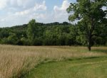 75-acres-in-douglas-country-grass